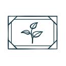 Plant Painting Icon
